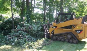 land clearing tomball arborist