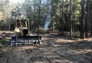 tomball tx land clearing